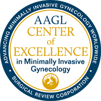 Center of Excellence in Minimally Invasive Gynecology (COEMIG) Award